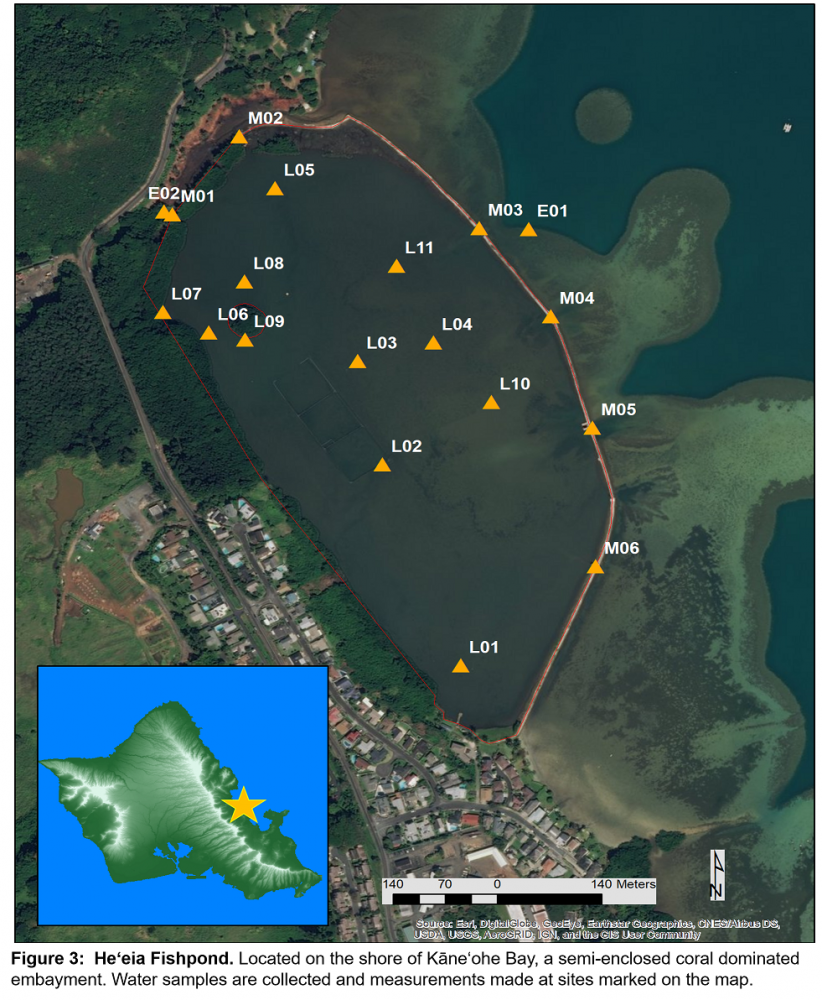 Figure 3:  Heʻeia Fishpond. Located on the shore of Kāneʻohe Bay, a semi-enclosed coral dominated embayment. Water samples are collected and measurements made at sites marked on the map.