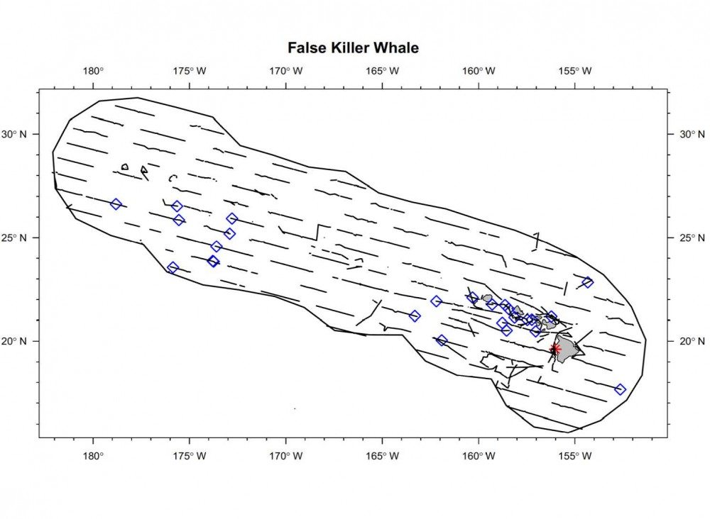 Sightings and acoustic detections of false killer whales.