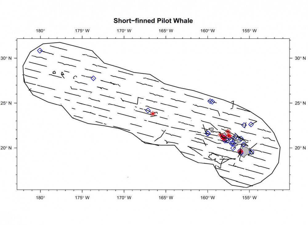Sightings and acoustic detections of short-finned pilot whales.