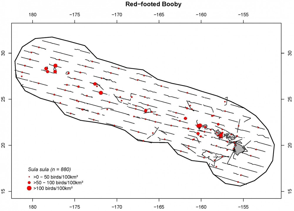 Distribution and density (birds/100 km2) for red-footed boobies.
